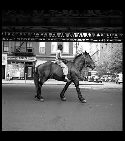 Horse_VivianMaier