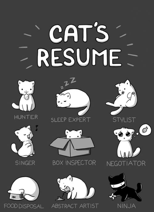 Cats_resume
