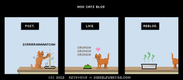 Kitty_blogger